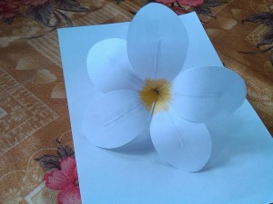 Paper Crafts Flower 1-t