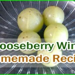 Homemade Gooseberry Wine Recipe – Amla Wine Recipe