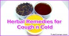 Single Medicine Therapy (Ottamooli) for Cough and Cold