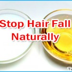 Tips to Reduce and Stop Hair Fall through Ayurveda