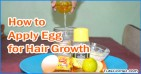How to Apply Egg on Hair for Hair Growth