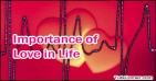 Importance of Love in Life