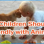 Reasons Why Children Must Be Friendly with Animals
