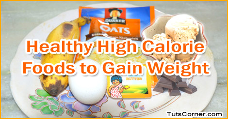 Healthy Foods List High In Calorie To Gain Weight Fast Tuts Corner