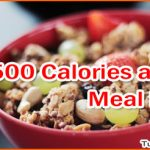 1500 Calories a Day Meal Plan